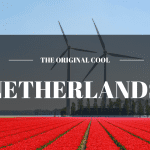 Do It Yourself Schengen Visa Application - Netherlands