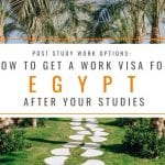 Post Study Work Options: How to Get A Work Visa in Egypt After Studies
