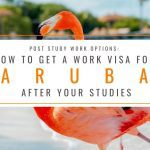 Post Study Work Options: How to Get a Work Visa in Aruba After Studies